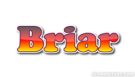 Briar Logo | Free Name Design Tool from Flaming Text