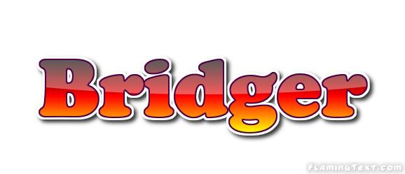 Bridger Logo | Free Name Design Tool from Flaming Text